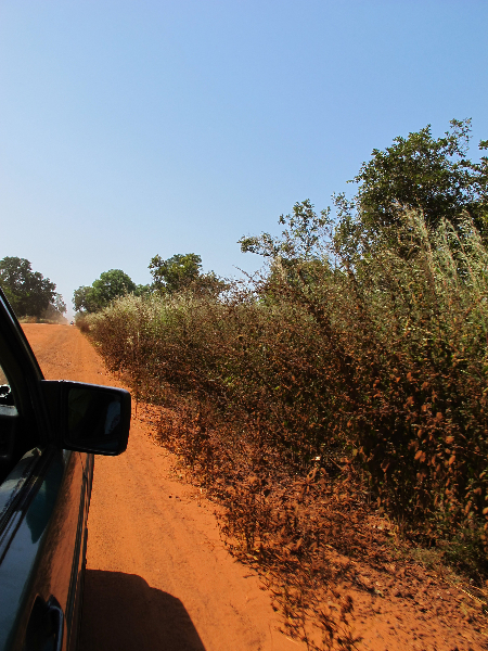 Road to Tendaba
